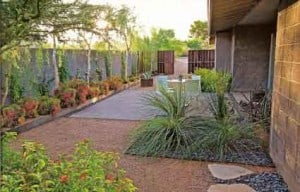 clean looking yard utilizes xeriscaping for best water performance