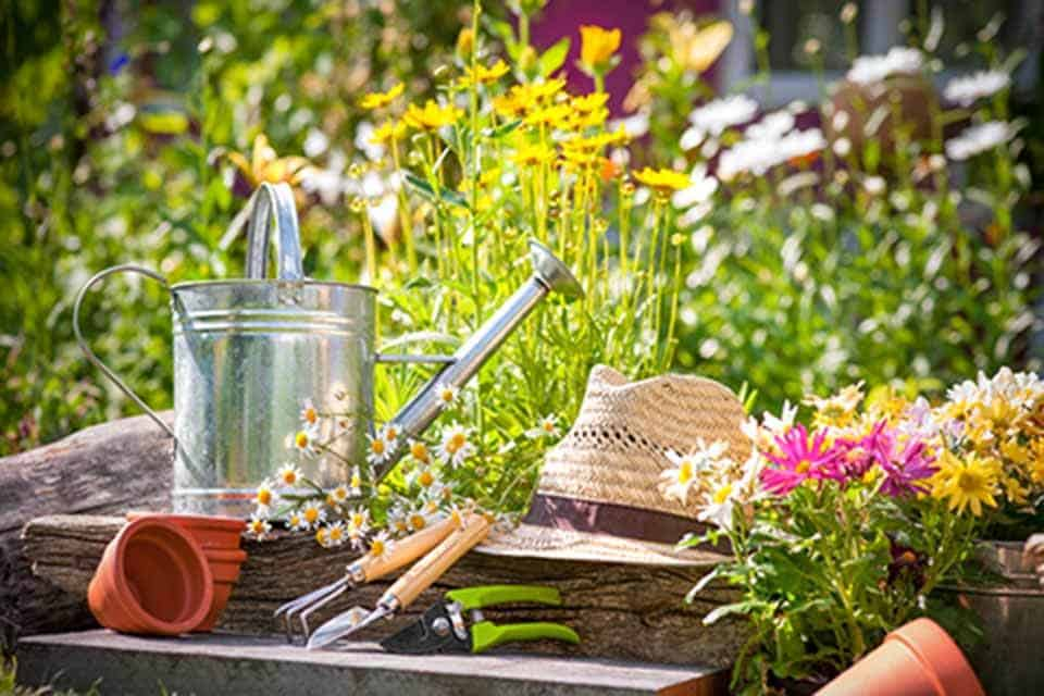 Garden Tools For A Great Garden
